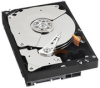 Western Digital Caviar Black Internal Hard Drive 1TB