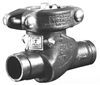 Check Valve -- 713-2IN-E - Image