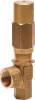 Balanced Relief Valve -- Model YBRV5325 - Image