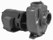 Fountain pump from Griswold Pump Company