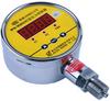 Pressure Controller -- MPM484C/MDM484C