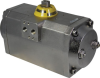 Stainless Steel Actuator -- S/S Series -- View Larger Image