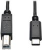 USB 2.0 Cable, USB Type-B Male to USB Type-C (USB-C) Male, 6-ft. -- U040-006 - Image