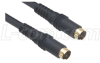 Molded S-Video Cable, Male / Male, 2.0 ft -- CCD234MM-2