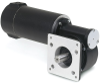 DC Gear Motors -- GPF13517