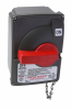 Non-Fusible Safety Toggle Switch -- PS30SSAX - Image