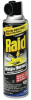 RAID WASP & HORNET KILLER ARSL 12/14 OZ -- 1124
