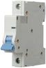 Mini Ckt Breaker,B Curve,1P,1A,220VDC -- 5ZVG6