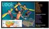 42-inch Widescreen Professional LCD Monitor -- PN-E421