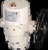 P9 HV AC Series Quarter Turn Electric Actuators -- P9-xxxPN4