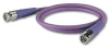 Canare RG59 BNC-BNC 3' Purple -- CANVAC003FPUR