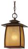 Light Outdoor Lantern -- OL8511SBR
