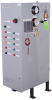 Type VWB Water Boiler -- VWB-42-1500 -- View Larger Image