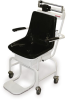 Mechanical Chair Scale -- RL-MCS