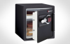 Electronic FIRE-SAFE® -- DS3607