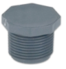 "2"" Gray Schedule 80 PVC Threaded Plug -- 27348"