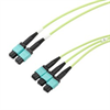 3xMPO8 no pins to 2xMPO12 no pins, OM5 50/125um Multimode, ONFR Jacket, Lime Green, 1 meter -- MPF308-MPF212OM5R-1 -Image