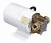 Moderate-Flow, flexible impeller pump, bronze/nitrile, 6.4 GPM, 18 psi, 12 VDC -- GO-75150-10 - Image