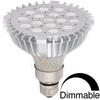 Miletus PAR-38 Dimmable LED Light Bulb (20-Watt, High-Power Nichia LEDs) -- LW10-5002-N16-NXB-W4K-DM