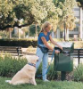Pet Waste Station,Bag Dispenser,Green -- 3VLK6