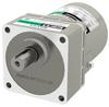 Induction Gear Motor -- 4IK25UA-25