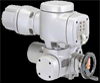 Industrial Electric Actuators -- AU Series -- View Larger Image