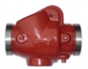 Check Valves for Fire Protection Applications