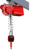 Crane Rail Mounted Lift -- Quick-Lift Rail, QL R 300i - Image