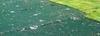 Temporary and Permanent Erosion Control Fabrics - Image