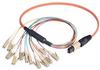 MPO Male to 12x LC Fan-out, 12 Fiber Ribbon, OM1 62.5/125 Multimode, OFNR Jacket, Orange, 5.0m -- MTPM12-LC-05 - Image