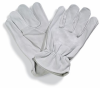 Goatskin Leather Gloves -- GLV458