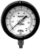 PPS Series StabiliZR™ Process Gauge -- PPS5335Z