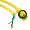 Circular Cable Assemblies -- WM4867-ND -Image