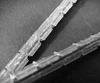 POW-R-VEEr; V-BELTS -- 2V-100 - Image