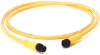 889 DC Micro Cable -- 889D-F4HJDM-10 -Image