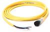 889 DC Micro Cable -- 889D-B4BCDM-5