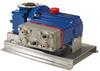 Hydra-Cell® Metering Pump -- P200 Series