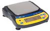 A&D Newton EJ Portable Balance, 2100 G X 0.1 G; 115VAC -- EW-11109-67