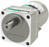 Induction Gear Motor -- 5IK40UA-15A -Image