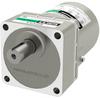Induction Gear Motor -- 5IK40UA-300