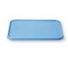 Small Mayo Tray, Blue -- 73068