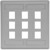 Datacommunication Face Plate -- IFP29GY - Image