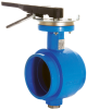 Grooved End Butterfly Valves -- 89-GEN