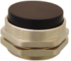 Extended Captivated Push Button -- PC-5E-RD