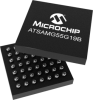 Low Power MCU/MPU -- ATSAMG55G19B