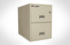 Legal Vertical 2-Drawer Water-Resistant Fire File -- 2G3131