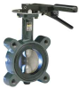 Butterfly Valve,Semi-Lug,2 1/2 In -- 4RCF9