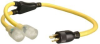 Power Supply/Appliance Cord -- 019248802
