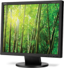 "19"" Value Eco-Friendly Desktop Monitor -- AS191-BK -- View Larger Image"