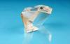 NLO Crystals -- BIBO Crystal -- View Larger Image